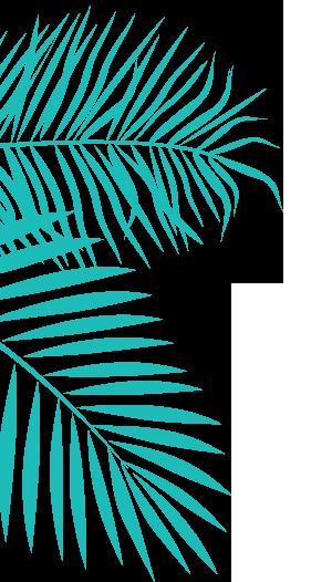 anjuna-left-03